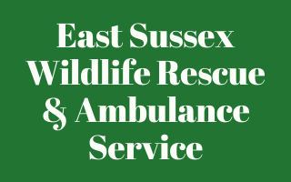 East Sussex Wildlife Rescue & Ambulance Service
